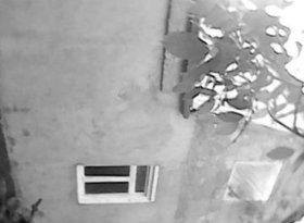 Продажа коттеджи, Ростовская обл., Таганрог, фото №2