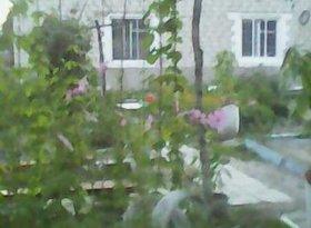 Продажа коттеджи, Амурская обл., село Хитровка, фото №4