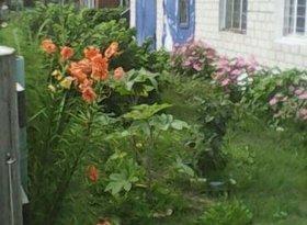 Продажа коттеджи, Амурская обл., село Хитровка, фото №7
