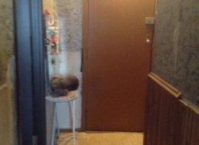 Продажа 1-комнатной квартиры, Вологодская обл., Череповец, улица Партизана Окинина, 16, фото №5