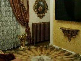 Продажа 4-комнатной квартиры, Новосибирская обл., Новосибирск, улица Семьи Шамшиных, 24/2, фото №7