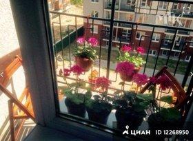 Продажа квартиры в свободной планировке , Калининградская обл., Светлогорск, Яблоневая улица, 8, фото №4